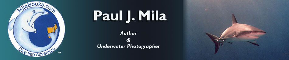 paul j mila - dangerous waters